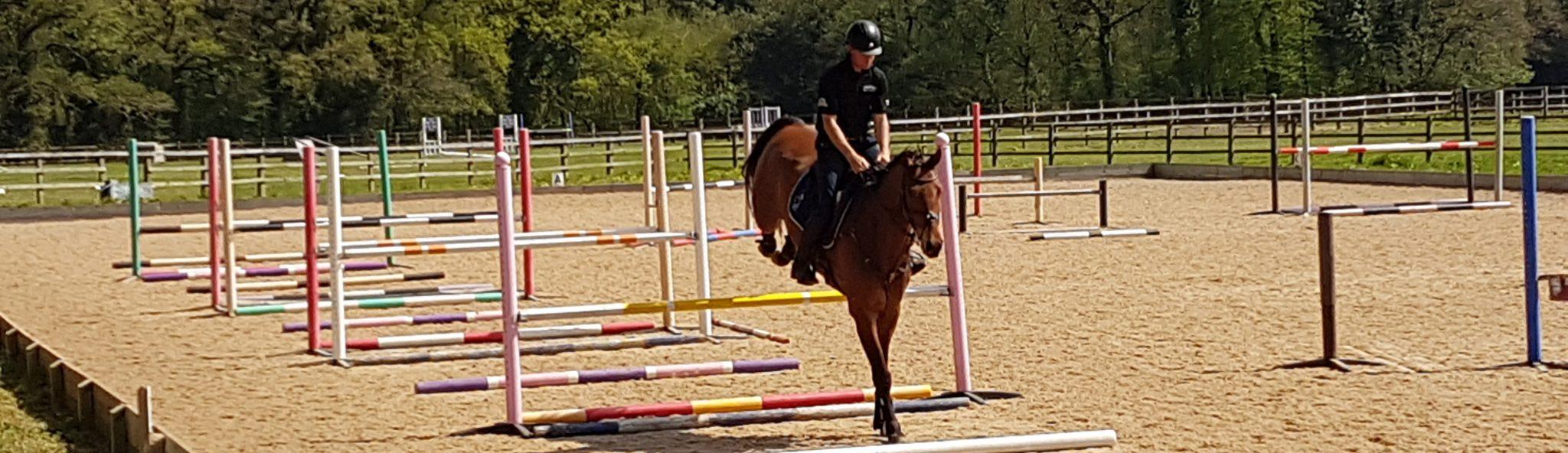 Horse and rider jumping over hurdles